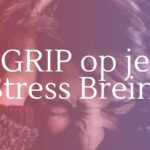 Grip on je stress brein
